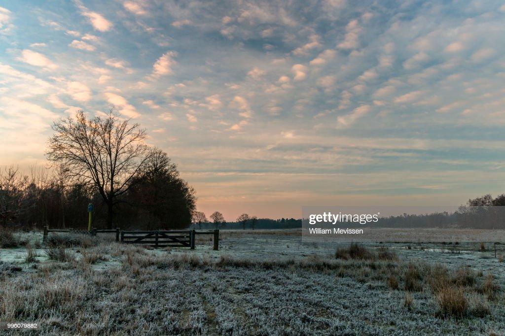 Frosty Land : Stockfoto
