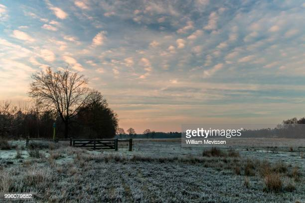 frosty land - william mevissen stock photos and pictures