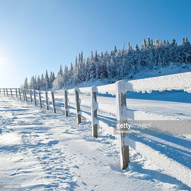 frosty morning - ii - mont tremblant stock pictures, royalty-free photos & images