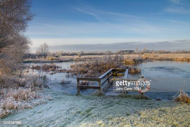frosty pond & decking at cabragh wetlands, thurles, co tipperary - ティッペラリー州 ストックフォトと画像