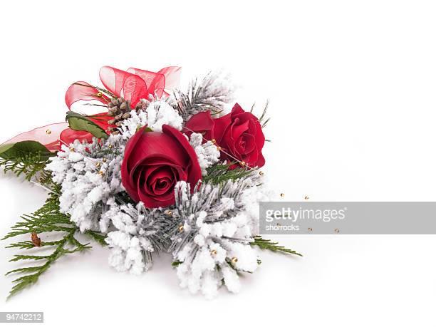 Frosty Roses