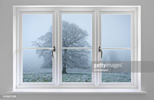frosty trees through white windows - window frame stock pictures, royalty-free photos & images