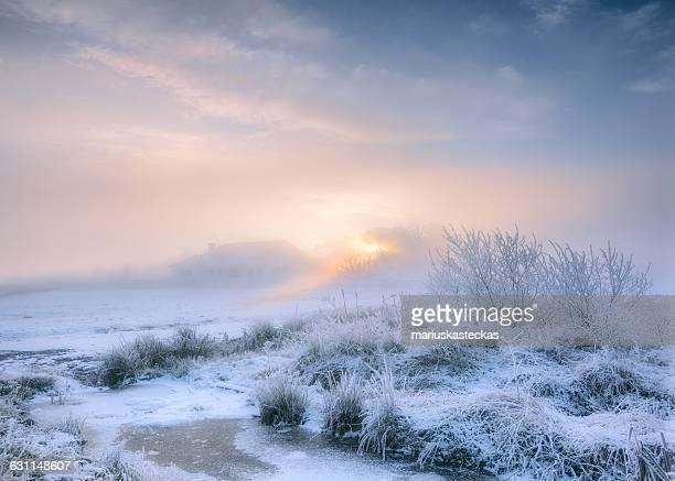 frosty winter landscape, cavan, ireland - county cavan stock photos and pictures