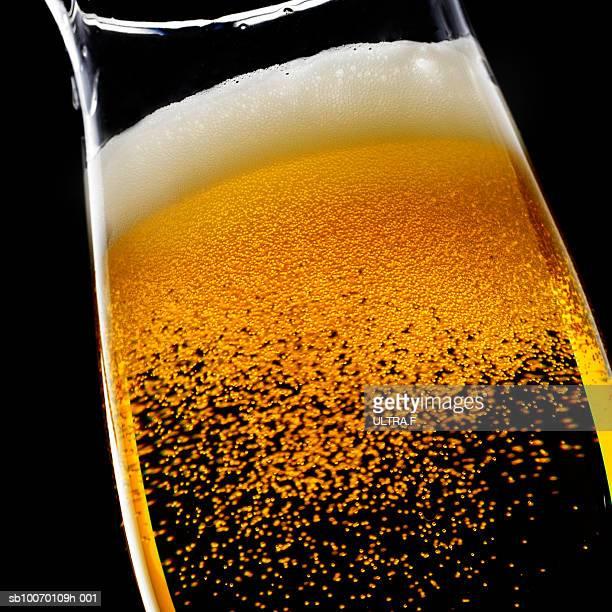 Frothy beer, studio shot