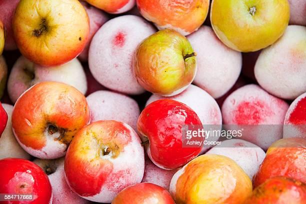 Frozen Apples.