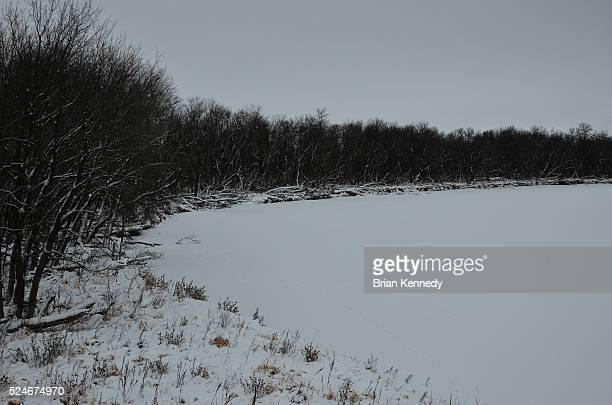 frozen assiniboine river - canadian prairies stock photos and pictures