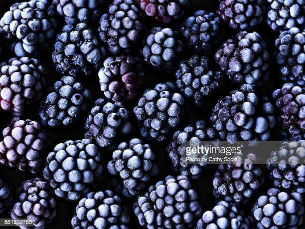 frozen blackberries - blackberry fruit stock pictures, royalty-free photos & images