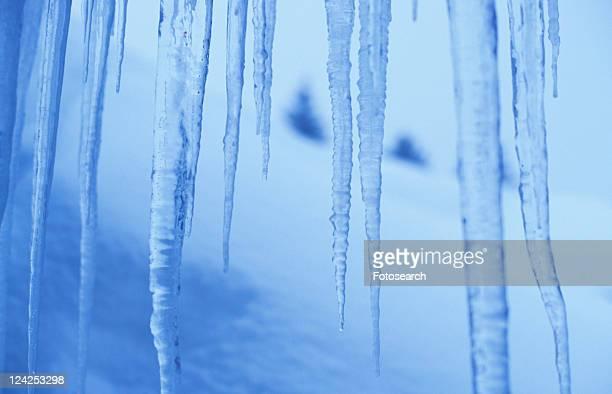 frozen, blauphoton, day, cold, cellar, alexander