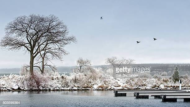 frozen breakwater landscape - barrie stock pictures, royalty-free photos & images