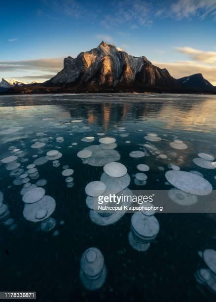 frozen bubble in abraham lake - see abraham lake stock-fotos und bilder