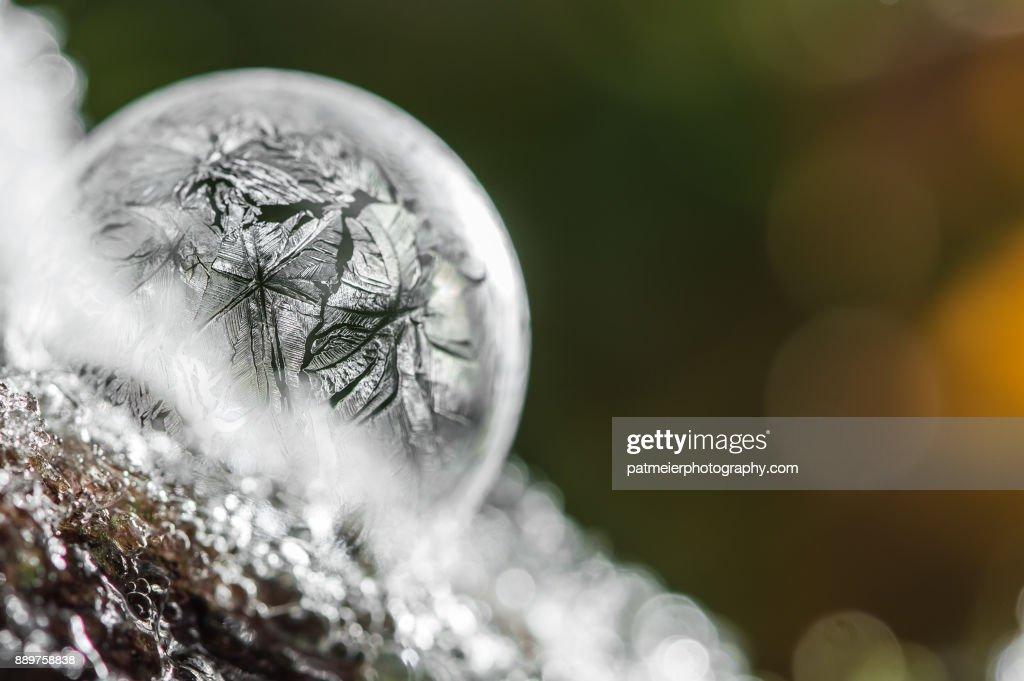 Frozen Bubbles : Stock-Foto
