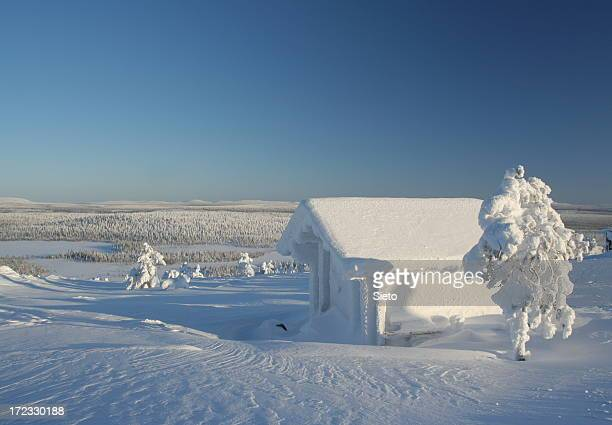frozen cabin with snow and trees - poolklimaat stockfoto's en -beelden