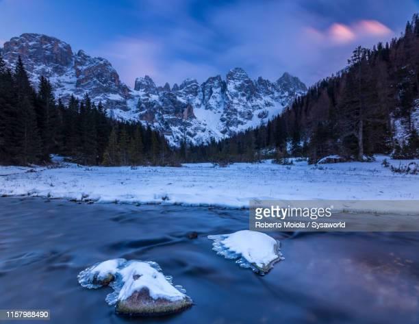 frozen creek, pale di san martino, venegia valley, dolomites - valle foto e immagini stock