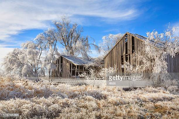 frozen icy and snowy old barns, trees, grass - bare tree stock pictures, royalty-free photos & images