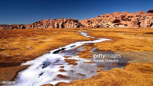 Frozen in Bolivian desert