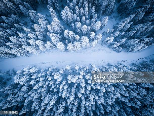frozen kingdom part - images stock pictures, royalty-free photos & images