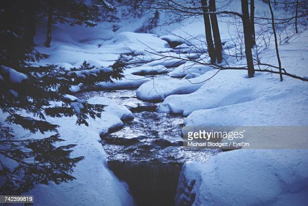 frozen lake in winter - michael blodgett stock pictures, royalty-free photos & images
