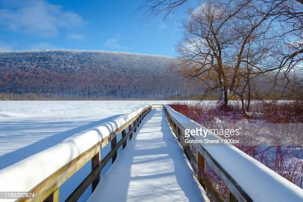frozen lake - home run ストックフォトと画像