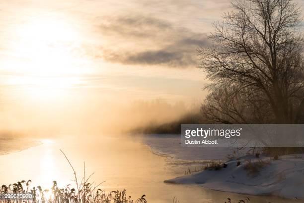 Frozen Mists