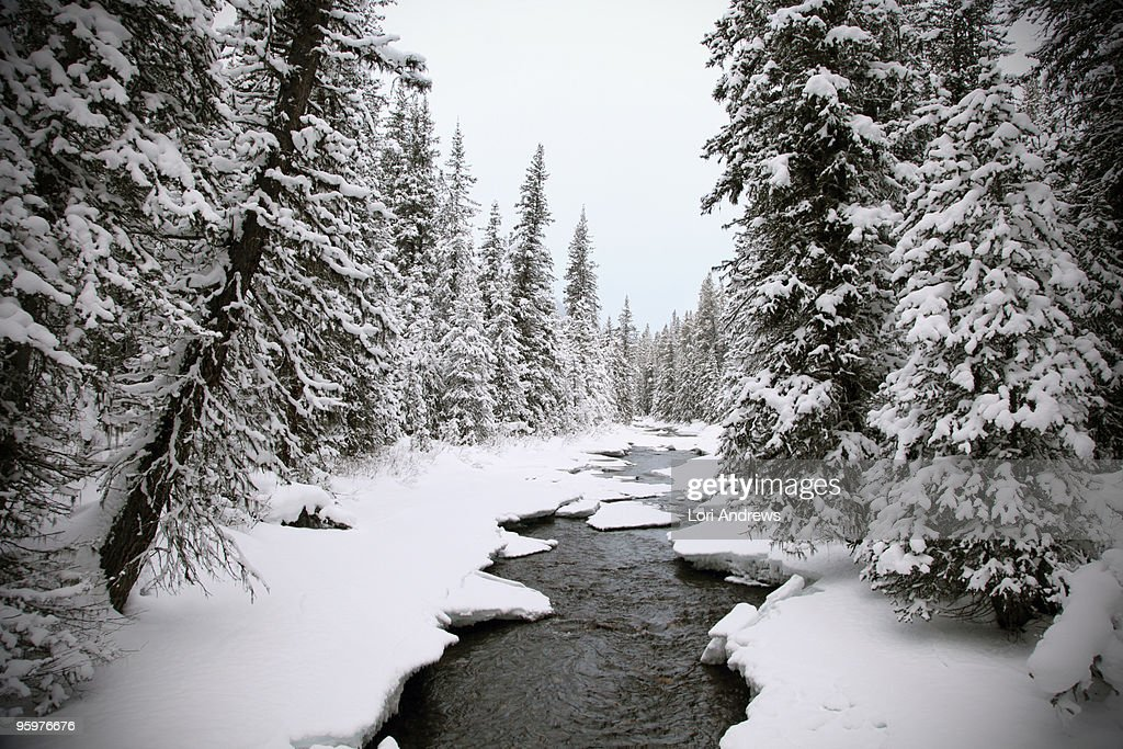 Frozen mountain river : Stock-Foto