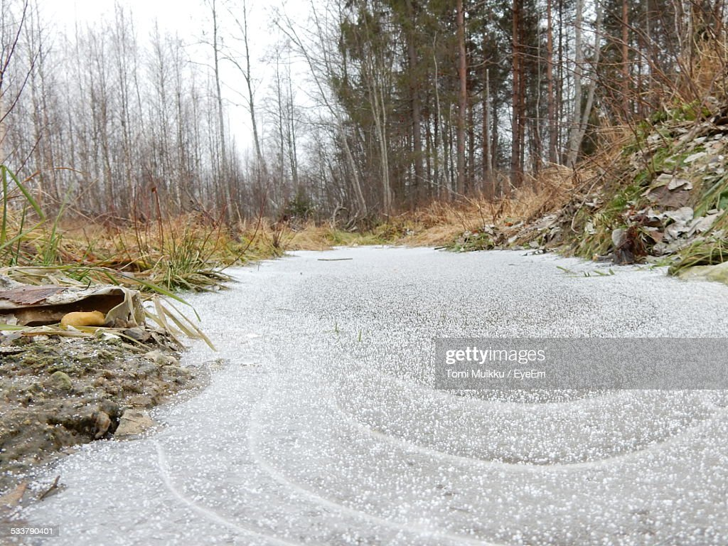 Frozen River During Winter In Forest : Foto stock