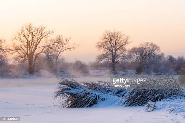 frozen river - estonia stock photos and pictures
