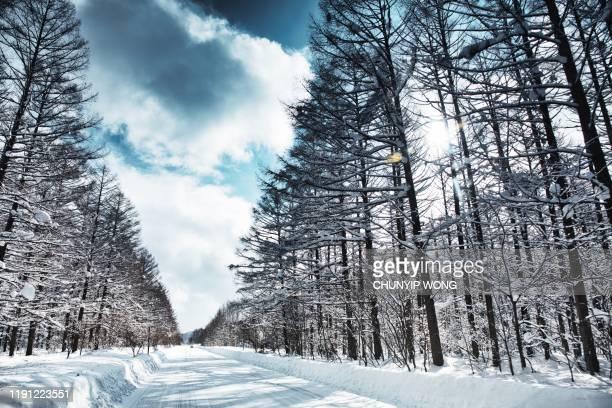 frozen road, biei hokaido, japan - hokkaido stock pictures, royalty-free photos & images