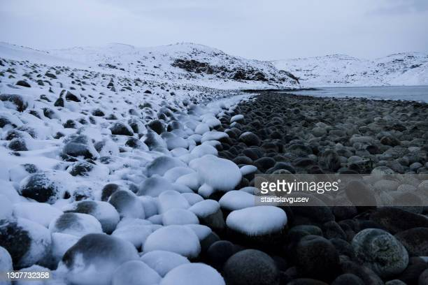 frozen rocky coastline in winter, murmansk, russia - frozen stock pictures, royalty-free photos & images