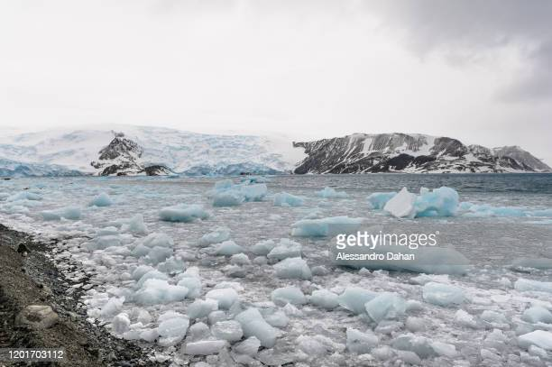 Frozen sea near beach in Admiralty Bay with STENHOUSE and AJAX Glacier in the background on November 05 2019 in King George Island Antarctica