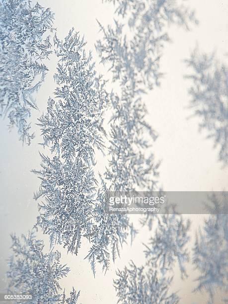 A frozen snowflake on a window
