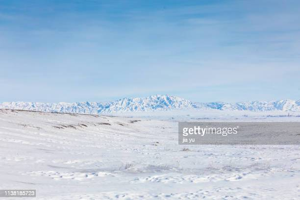 frozen, tianshan mountains in the background - snowfield stock pictures, royalty-free photos & images