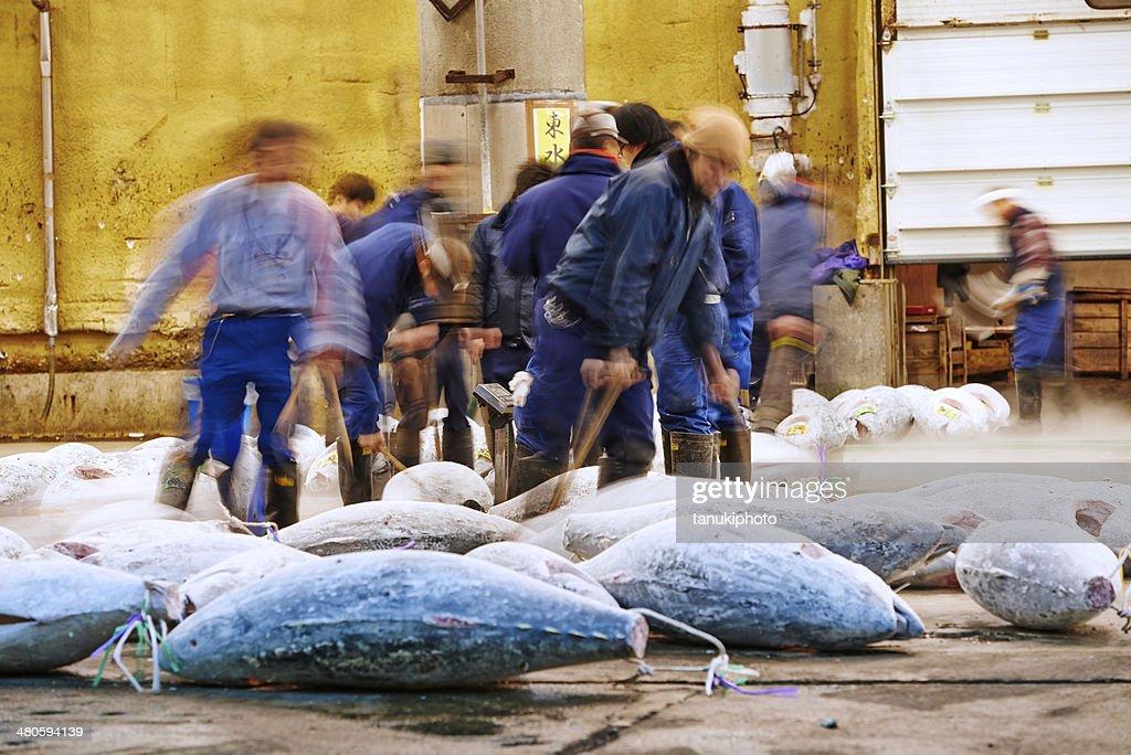 Frozen Tuna at Tsukiji Fish Market : Stock Photo