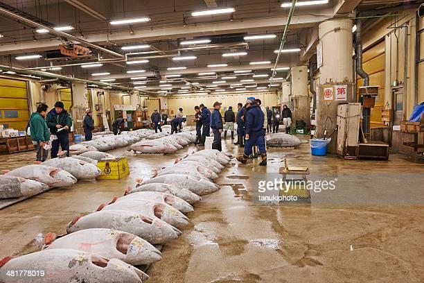 frozen tuna at tsukiji fish market - bluefin tuna stock pictures, royalty-free photos & images