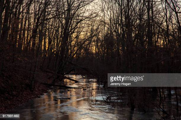 frozen water in the forest near bean blossom nature preserve - bloomington indiana stock photos and pictures