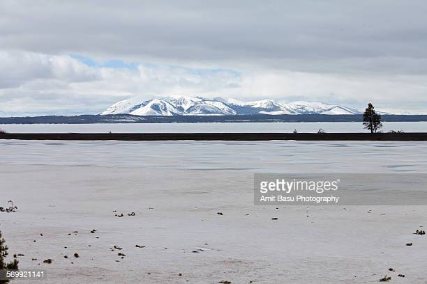 frozen yellowstone lake] - amit basu stock pictures, royalty-free photos & images