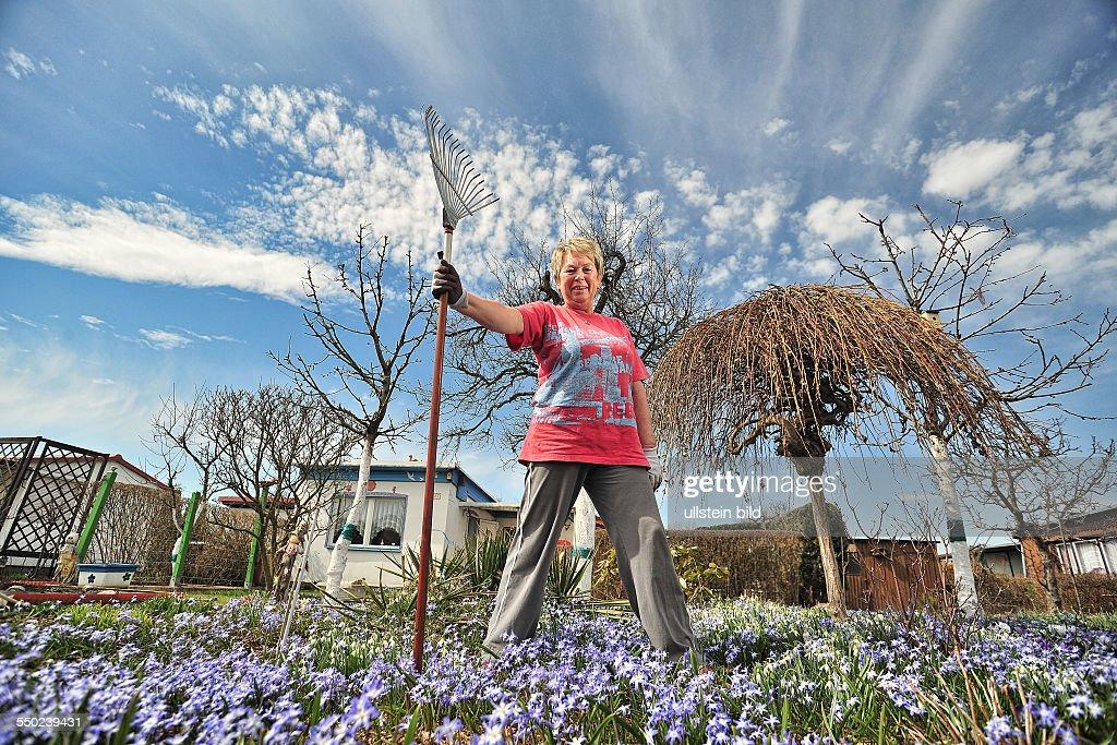 Fruehling Garten Blumen Bluehen Kolonie Land In Sonne Brigitte