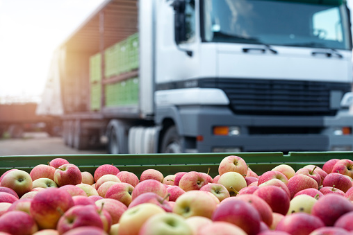 Fruit and food distribution. Truck loaded with containers full of apples ready to be shipped to the market. 1068635350