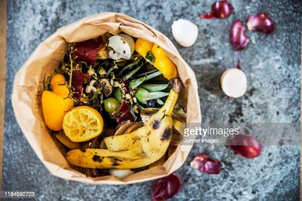 fruit and vegetable scraps - humus photos et images de collection