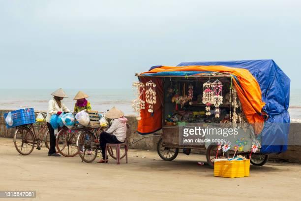 fruit and vegetable vendors in lam dinh province (vietnam) - ナムディン ストックフォトと画像
