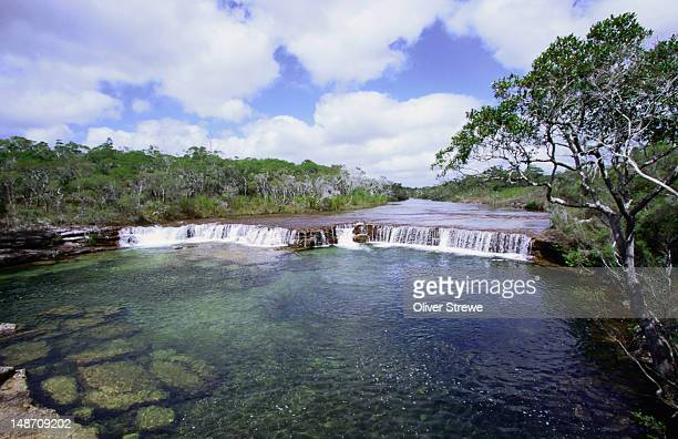 fruit bat falls in the northern tip of cape york peninsula - north stock pictures, royalty-free photos & images