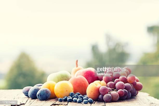 fruit harvest in garden