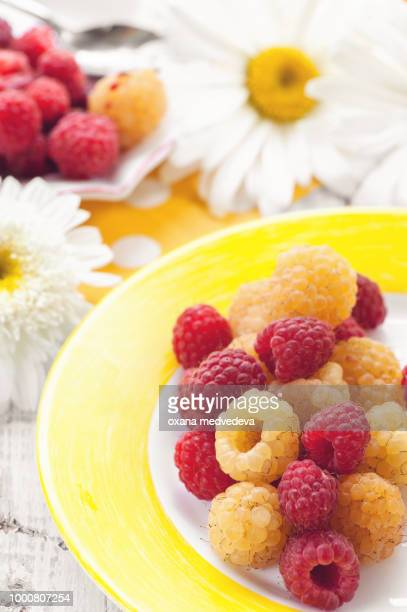 Fruit ice cream yellow raspberry with mixed berries raspberries on a plate on the background of...