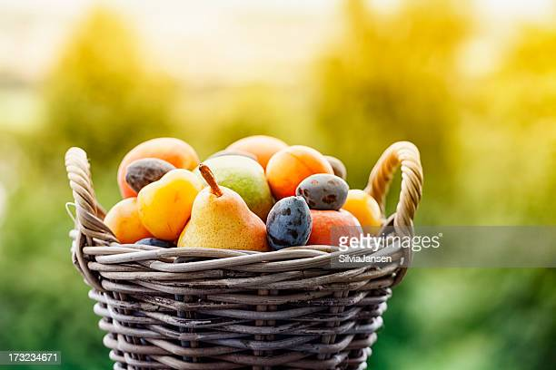 fruit in basket outdoors  summer