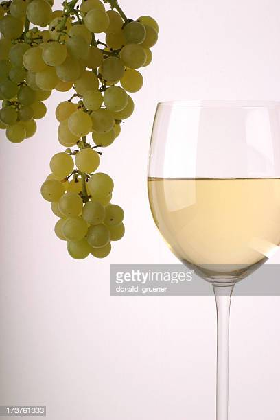 fruit of the vine - chardonnay grape stock photos and pictures