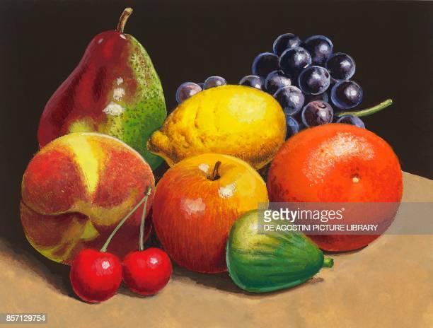 pear lemon grape peach cherry apple fig orange drawing