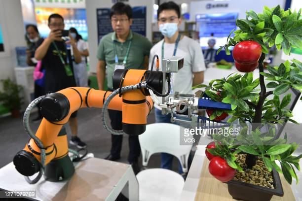 Fruit picking robot picks 'apples' during the 16th China International Software Product and Information Service Trade Fair at the Nanjing...