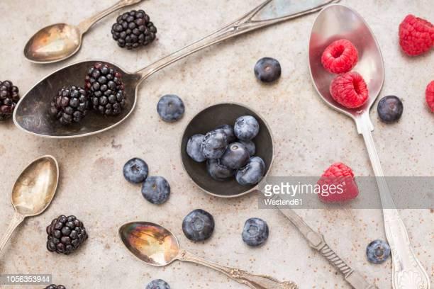 fruits on various spoons - ティースプーン ストックフォトと画像
