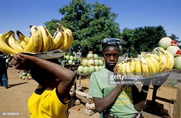 Fruits sellers along the Highway Dakar to Ziguinchor Cayor Senegal