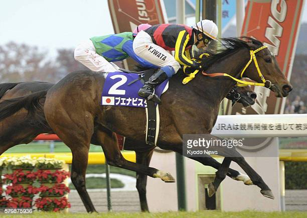 Fuchu, Japan - Buena Vista noses across the line to win the Japan Cup at Tokyo Racecourse on Nov. 27 capturing her sixth Grade 1 title. Behind Buena...