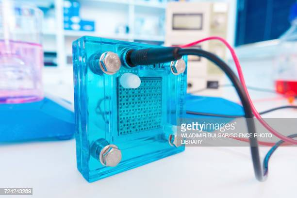 Fuel cell in laboratory